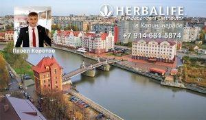 Независимый Партнер Гербалайф в Калининграде, онлайн услуги